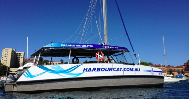 Harbourcat Whale Watching Cruise