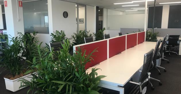 Flexi-Desk in Surry Hills
