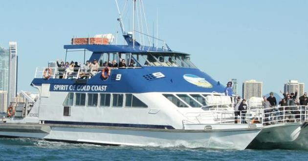 Gold Coast Boat Hire - Up to 100 people Covid Safe!
