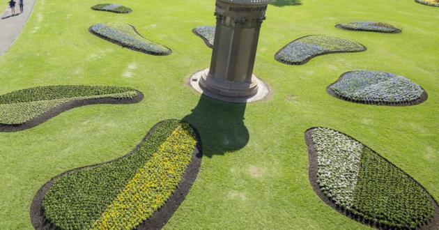 Flower Bed Lawn