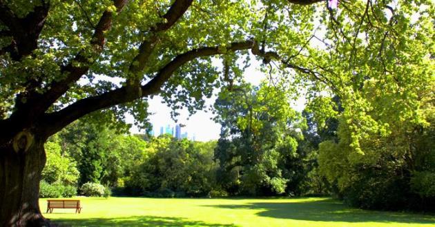 Tennyson Lawn