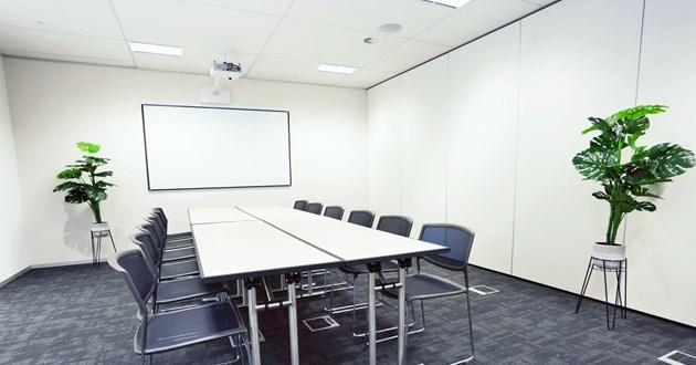 12-20 Person Training Room