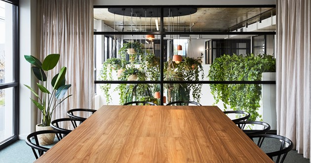 Light filled 12 Person Meeting Space (B)