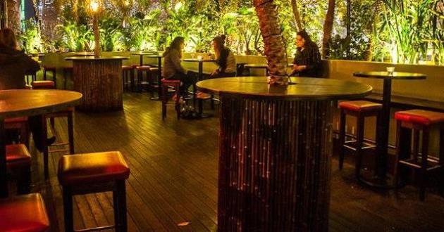 Tropical Private Balcony