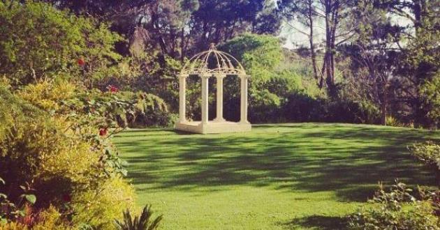 Fountain Lawn
